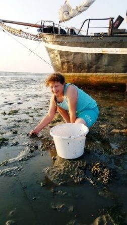 schelpen, zeesterren en zelfs zeepaardjes worden gevonden tijdens het droogvallen.